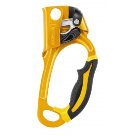 Petzl ASCENSION  Left / Right