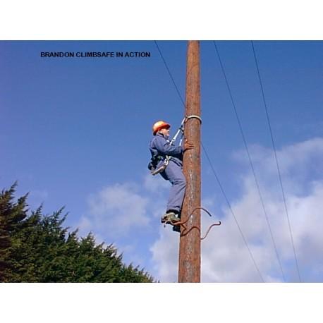 Pole Top Rescue
